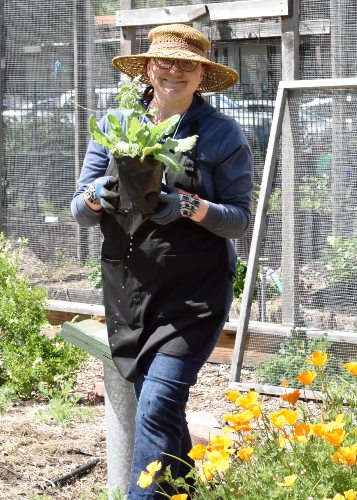 Master gardener at work in a demonstration garden.