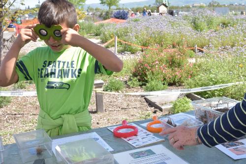 Hands on garden education for kids