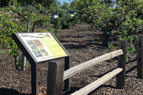 Demonstration orchard